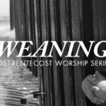 Weaning – June 25th